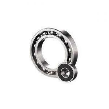 NU228 W NSK Cylindrical Roller Bearing